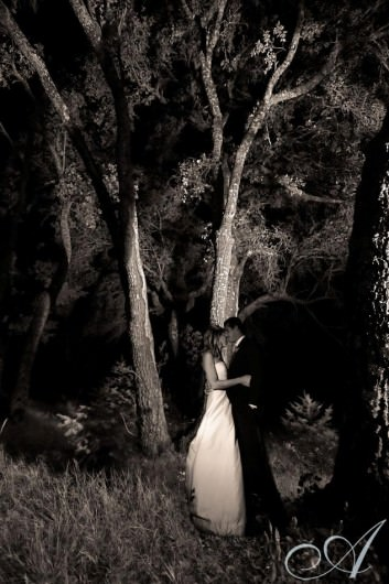 allison_adam_wedding-bride and groom by moonlight in the forest at hans fahden winery - calistoga, ca