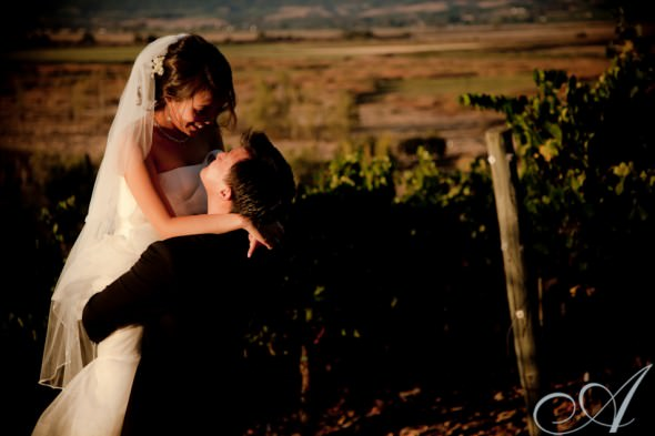 viansa-winery-wedding-vineyard-sonoma-ca-1