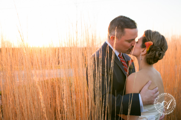 couple's kiss during portraits in the grasses