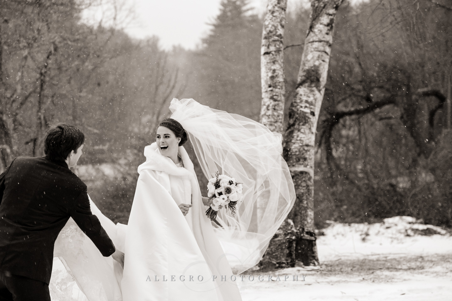 more wind and snow - photo by allegro photography