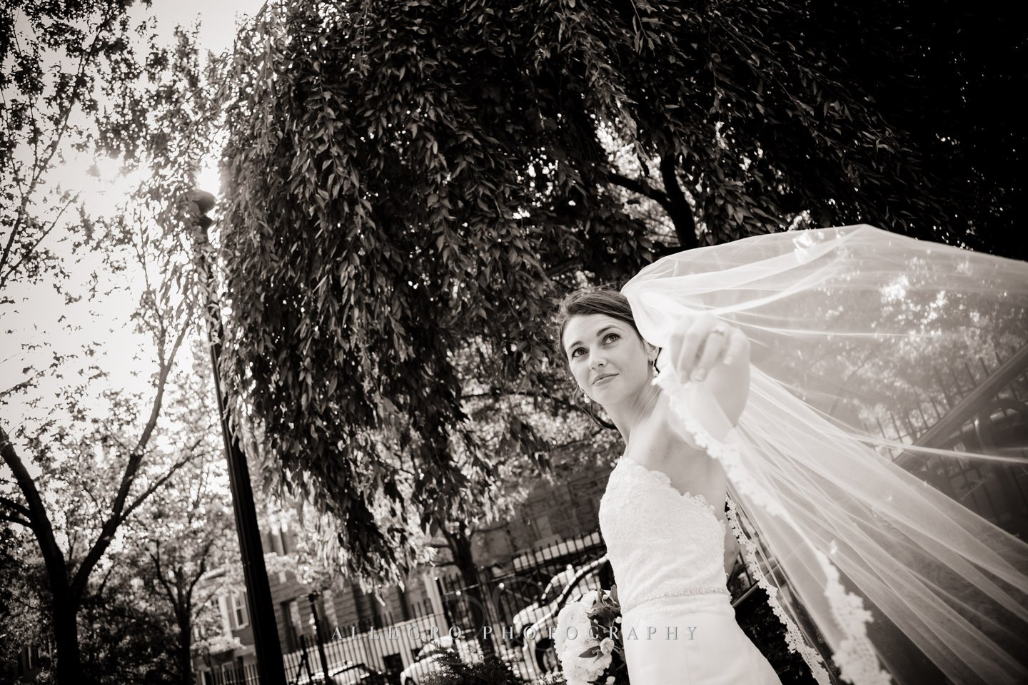 bride with veil photo by Allegro Photography