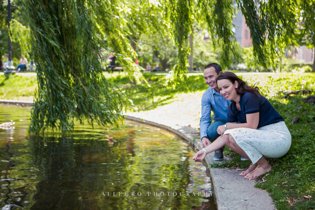 boston public gardens - photographed by allegro photography